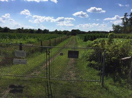 HIGHLAND, CEMETERY - Black Hawk County, Iowa | CEMETERY HIGHLAND