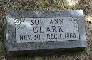 CLARK, SUE ANN - Black Hawk County, Iowa | SUE ANN CLARK