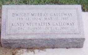GALLOWAY, AGNES NEUHALFEN - Black Hawk County, Iowa | AGNES NEUHALFEN GALLOWAY