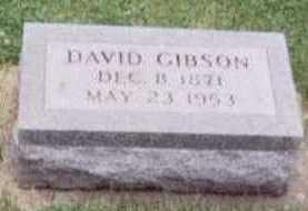 GIBSON, DAVID - Black Hawk County, Iowa | DAVID GIBSON