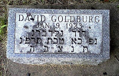 GOLDBURG, DAVID - Black Hawk County, Iowa | DAVID GOLDBURG