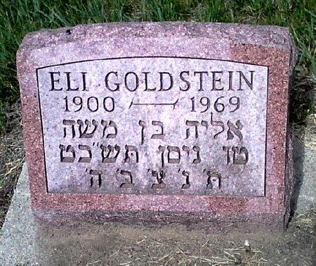 GOLDSTEIN, ELI - Black Hawk County, Iowa | ELI GOLDSTEIN