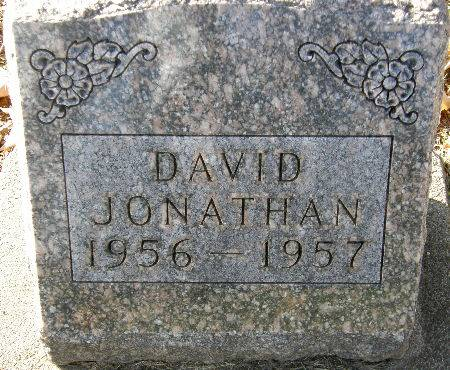 JONATHAN, DAVID - Black Hawk County, Iowa | DAVID JONATHAN