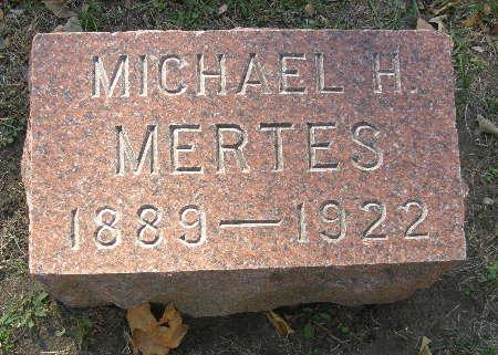 MERTES, MICHAEL H - Black Hawk County, Iowa | MICHAEL H MERTES