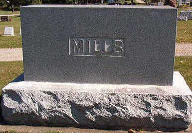 MILLS, FAMILY SRONE - Black Hawk County, Iowa | FAMILY SRONE MILLS