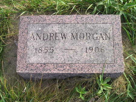 MORGAN, ANDREW - Black Hawk County, Iowa | ANDREW MORGAN