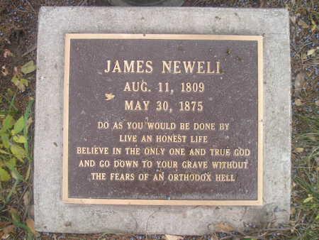 NEWELL, JAMES - Black Hawk County, Iowa   JAMES NEWELL