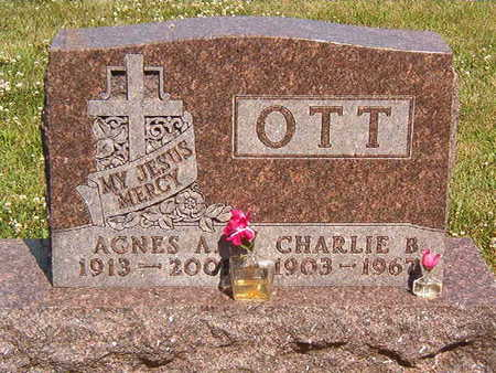 OTT, AGNES A. - Black Hawk County, Iowa | AGNES A. OTT