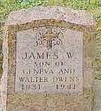 OWENS, JAMES W. - Black Hawk County, Iowa | JAMES W. OWENS