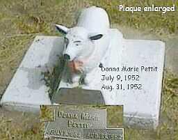 PETTIT, DONNA MARIE - Black Hawk County, Iowa | DONNA MARIE PETTIT
