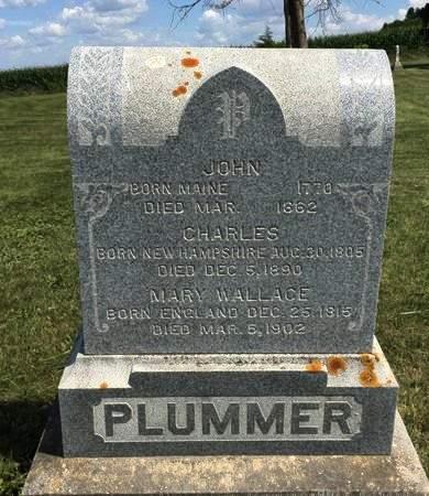 WALLACE PLUMMER, MARY - Black Hawk County, Iowa | MARY WALLACE PLUMMER