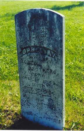 PROTHERO, OPHELIA - Black Hawk County, Iowa   OPHELIA PROTHERO