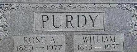 PURDY, WILLIAM - Black Hawk County, Iowa | WILLIAM PURDY
