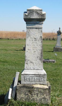 REED, MARTHA S. - Black Hawk County, Iowa | MARTHA S. REED
