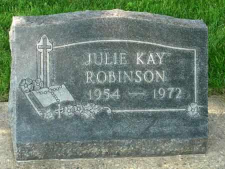 ROBINSON, JULIE KAY - Black Hawk County, Iowa   JULIE KAY ROBINSON