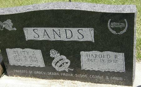 SANDS, BETTY J. - Black Hawk County, Iowa | BETTY J. SANDS