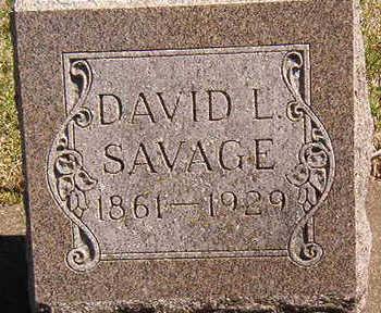 SAVAGE, DAVID L. - Black Hawk County, Iowa | DAVID L. SAVAGE