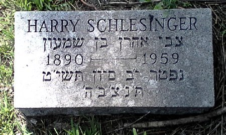 SCHLESINGER, HARRY - Black Hawk County, Iowa | HARRY SCHLESINGER