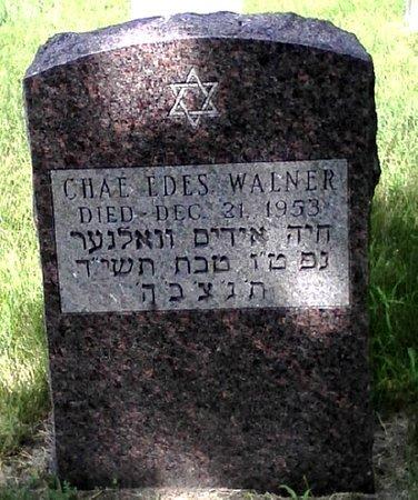 WALNER, CHAE EDES - Black Hawk County, Iowa | CHAE EDES WALNER