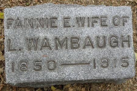 WAMBAUGH, FANNIE E. - Black Hawk County, Iowa | FANNIE E. WAMBAUGH