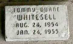 WHITESELL, TOMMY DUANE - Black Hawk County, Iowa | TOMMY DUANE WHITESELL