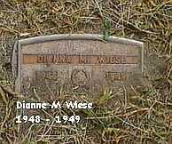 WIESE, DIANNE M. - Black Hawk County, Iowa   DIANNE M. WIESE