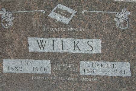 WILKS, LILY - Black Hawk County, Iowa | LILY WILKS