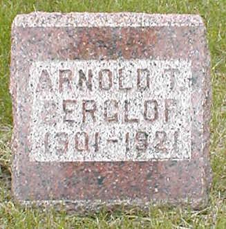 BERGLOF, ARNOLD T. - Boone County, Iowa | ARNOLD T. BERGLOF