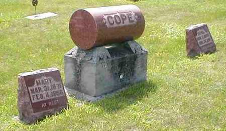 COPE, FAMILY - Boone County, Iowa   FAMILY COPE