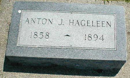 HAGELEEN, ANTON J. - Boone County, Iowa   ANTON J. HAGELEEN