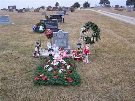 HAVLIK, CALLY ANN - Boone County, Iowa | CALLY ANN HAVLIK
