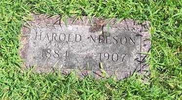 NELSON, HAROLD - Boone County, Iowa | HAROLD NELSON