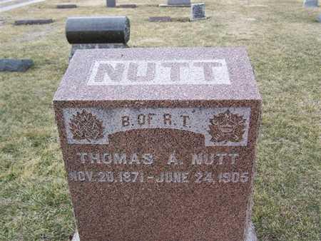 NUTT, THOMAS A. - Boone County, Iowa | THOMAS A. NUTT
