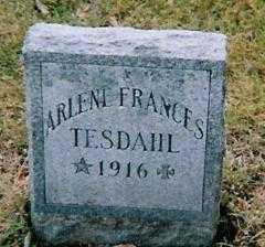 TESDAHL, ARLENE FRANCES - Boone County, Iowa   ARLENE FRANCES TESDAHL