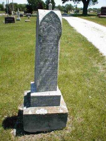 TINGWALD, FRIEDRICH T. - Boone County, Iowa   FRIEDRICH T. TINGWALD