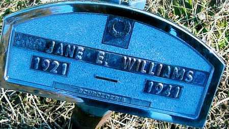 WILLIAMS, JANE E. - Boone County, Iowa   JANE E. WILLIAMS