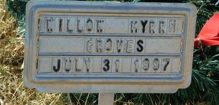 GROVES, WILLOW - Boone County, Iowa | WILLOW GROVES