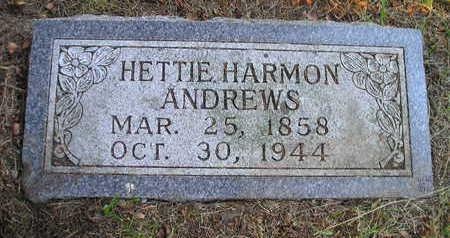 HARMON ANDREWS, HETTIE - Bremer County, Iowa | HETTIE HARMON ANDREWS