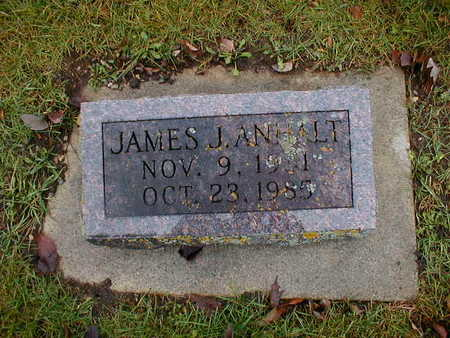 ANHALT, JAMES J - Bremer County, Iowa | JAMES J ANHALT
