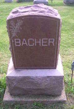 BACHER, LEO - Bremer County, Iowa | LEO BACHER