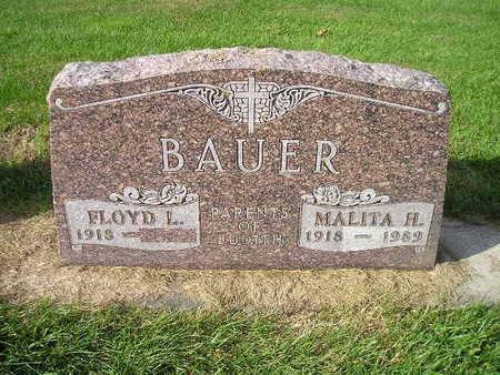 BAUER, FLOYD L - Bremer County, Iowa   FLOYD L BAUER