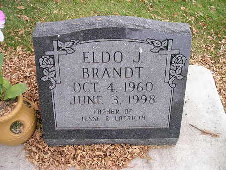 BRANDT, ELDO J - Bremer County, Iowa   ELDO J BRANDT