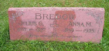 BREDOW, JULIUS G - Bremer County, Iowa | JULIUS G BREDOW