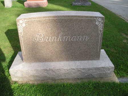 BRINKMANN, FAMILY - Bremer County, Iowa | FAMILY BRINKMANN