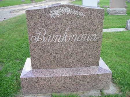 BRINKMANN, FAMILY - Bremer County, Iowa   FAMILY BRINKMANN