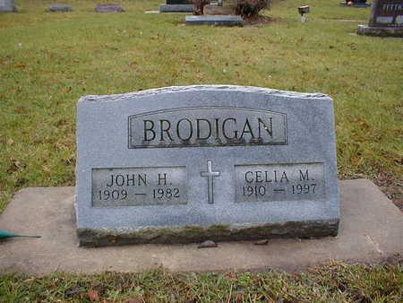 BRODIGAN, JOHN H - Bremer County, Iowa | JOHN H BRODIGAN