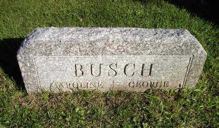 BUSCH, GEORGE - Bremer County, Iowa | GEORGE BUSCH