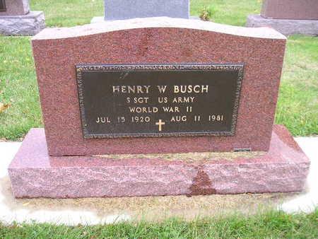 BUSCH, HENRY W - Bremer County, Iowa | HENRY W BUSCH