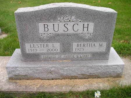 BUSCH, BERTHA M - Bremer County, Iowa   BERTHA M BUSCH