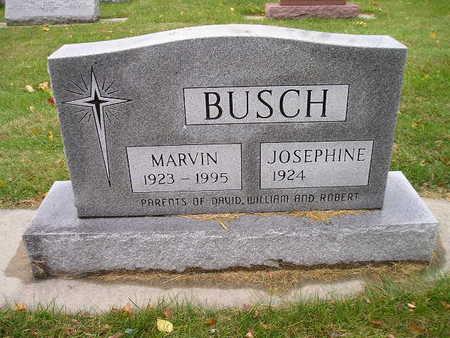 BUSCH, JOSEPHINE - Bremer County, Iowa | JOSEPHINE BUSCH